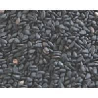best quality Brown Sesame Seeds price for sale