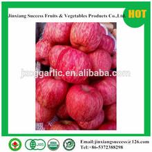 2014 bulk yantai fuji apples wholesale fruit prices