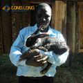 coniglio rete metallica gabbia per conigli gabbie di conigli commerciale