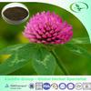 Red clover extract/P.E powder (Biochanin A,B) Trifolium pratense L.