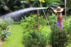 garden high pressure water paint spray gun