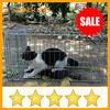 cat trap cage rabbit cage trap fox cage trap
