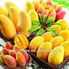 manufacturer of mango fruit grading Machine