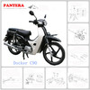 PT110-C90 Low Price 70cc 90cc 110cc Cheap Docker C90 Chongqing Mini Moto Pocket Bike