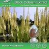 Natural Black Cohosh P.E. Powder