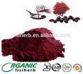 produtosdebeleza qualidade superior aditivo alimentar astaxantina pó suplemento