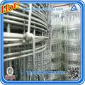 galvanisé clôture à gibier