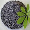 npk fertiliser, price npk 15 15 15,fertilizer npk 12-24-12,npk 17 17 17 fertilizer