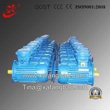 three phase ac high efficiency electric motor