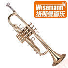 Wisemann DTR-780 handmade Bb professional Trumpet