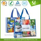 Cheap wholesale pp non woven shopping bag, shopping bag cotton