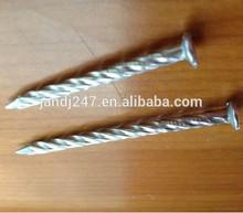 stainless steel twist nail /304 SS twist nail