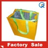 Customized size and handle style Insulated pp woven cooler bag promotional