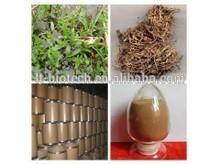 100% naturale ascophyllum nodosum estratto estratto di alghe in polvere