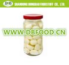 China New Crop Canned fresh garlic Clove in BrIne with HACCP Certificate