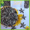cheap best edible sunflower seeds in bulk