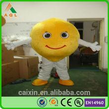 carton fruit adult mascot cost