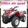 quad bike cheap 250cc street legal atv