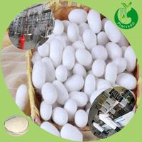 Skin care silk powder silk protein extract