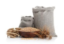 we are looking for reliable buyer of barley barley origined Australia with good quality and best price