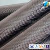 carbon fiber exhaust