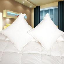 High quality cheap white Down Cushion