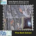 High Quality 95% OPC Pine Bark Extract