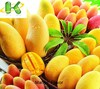 Long lasting Hot sell liquid Mango Flavor