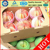 mesh protective sleeves for fruits packing wholesale