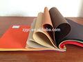 Pp tessuto non tessuto da filo continuo, recycalde tessuto cuscini colorati& federe