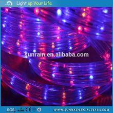 Rational Construction Christmas Rope Light Motif