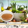 Cuidados de saúde antioxidante extratosvegetais/qulity super oleuropein/de folha de oliveira cápsulas