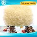 halal gelatina di pesce commestibile addensanti 160 fioritura