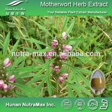 Top Quality Motherwort Herb P.E. 5:1 10:1 20:1