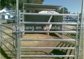 bestiame zincato pannello di recinzione di ferro