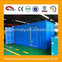 1MW / 2MW good power performance biogas plant generator for factory