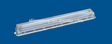 Full-plastic Fluorescent lamp