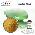 Lotus Leaf Extract,Lotus Leaves Extract powder ,Folium Nelumbinis Extract