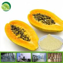 Organic pure natural with hot selling dried papaya powder