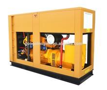 60Hz Soundproof Biogas Landfill Gas Generator 200kW 250kVA