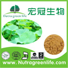 100 Percent high quality and best price Natural Lotus Leaf extract