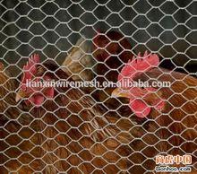 Chicken wire mesh/Hexagonal wire netting/hot dipped galvanized hexagonal wire mesh