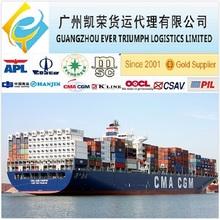 Guangzhou/Shenzhen/Shanghai to Singapore LCL FCL Shipping Sea Freight