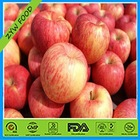 2014 Bulk Fresh Red Fuji Apple Fruit