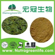 Manufacturer senna leaf extract, folium sennae extract, Sennoside 3%-60%