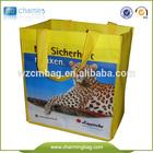 Promotion Factory making pp non woven shopping eco bag with print logo/reusable eco shopping bag pink