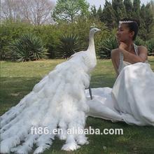 wholesale artificial feather mini craft peacock decoration bird