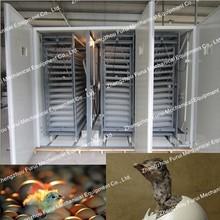 Maquillaje incubadora del huevo del pollo / piezas de incubadoras de huevos para la venta