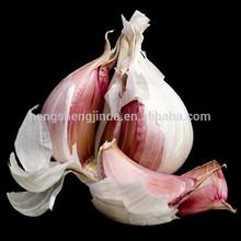 Fresh Natural Red Garlic