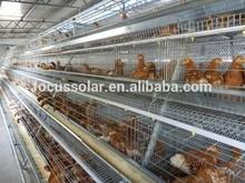 layer chicken breeding cage with best price